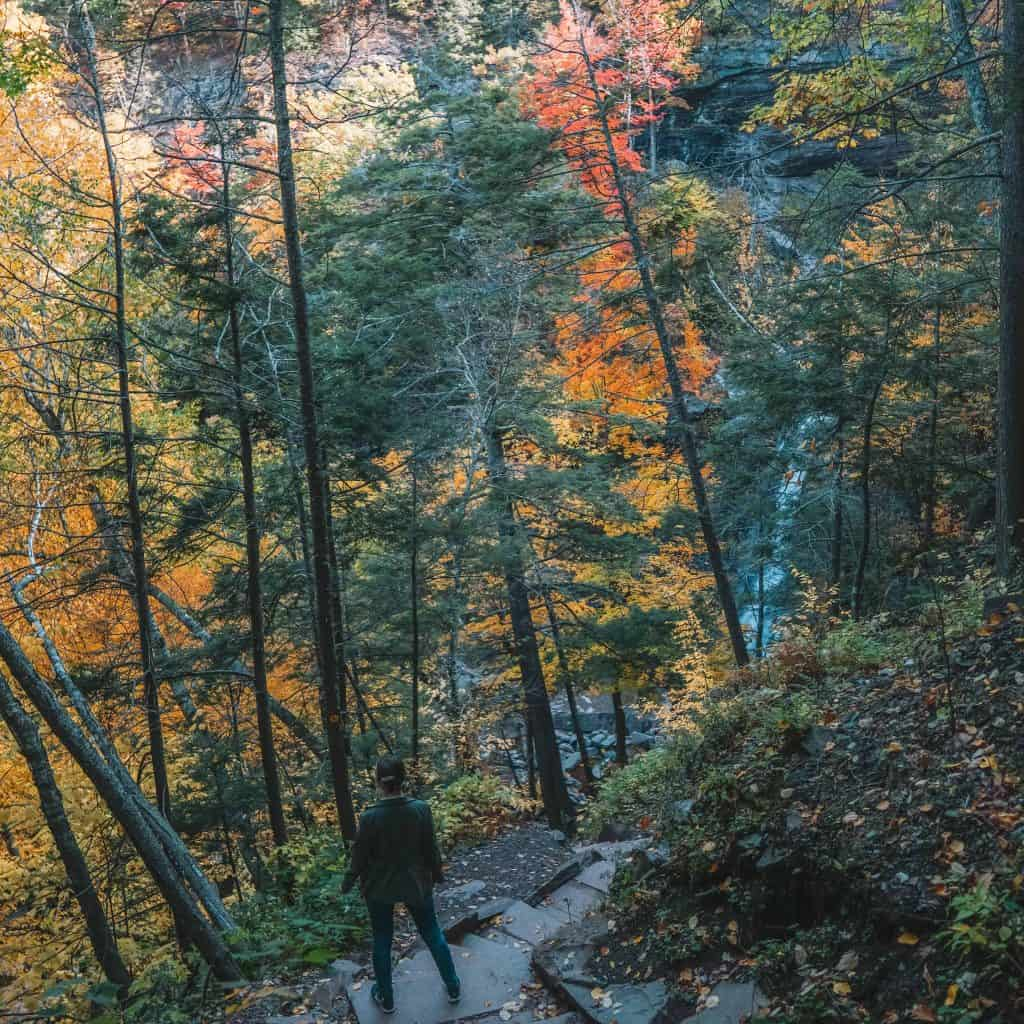 Girl looking down the Kaaterskill Falls during fall foliage in Catskills