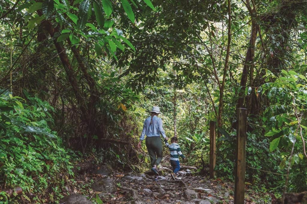 Baby and mom hiking in El Yunque Rainforest