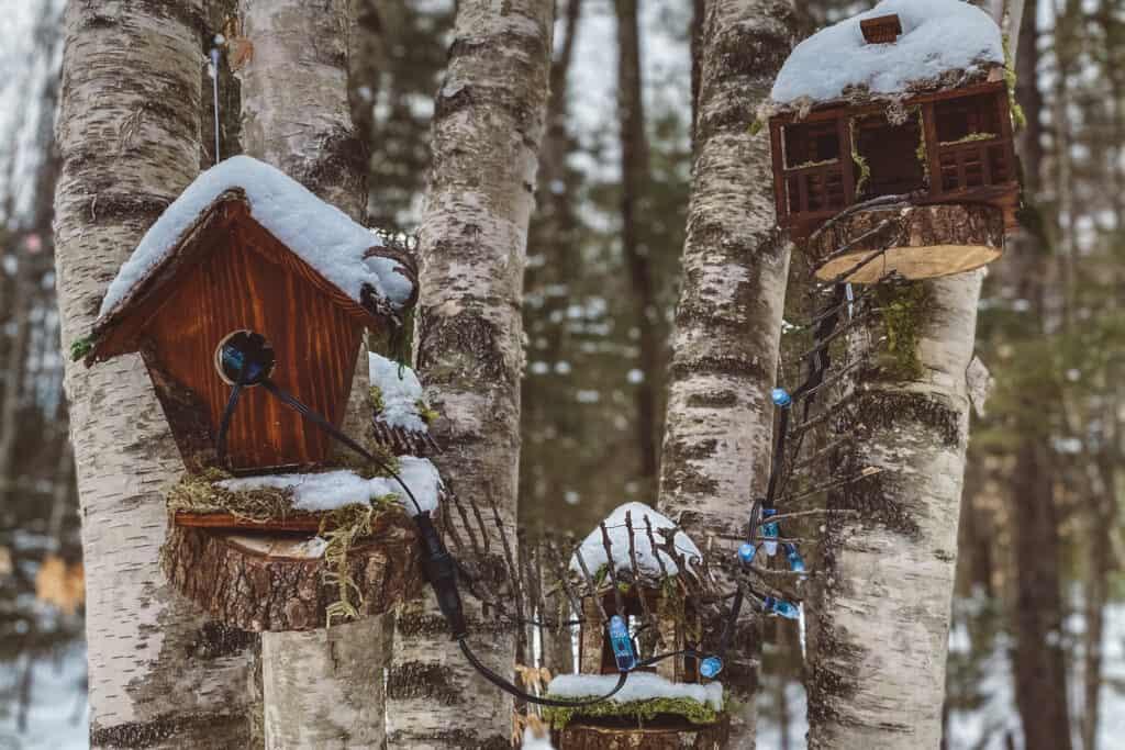 Bird houses inside the Ice Castles Forest