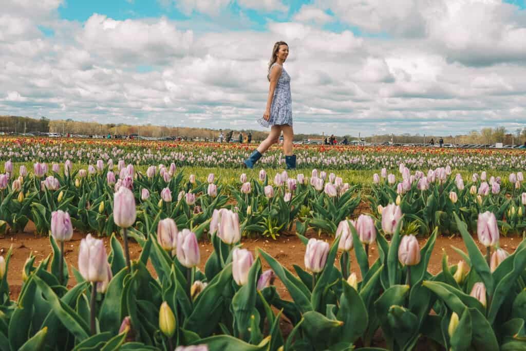 Girl walking in the tulips farm nj